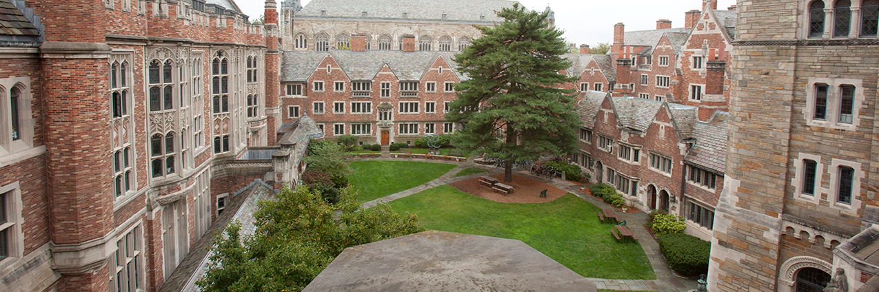 Overhead view of the YLS Courtyard