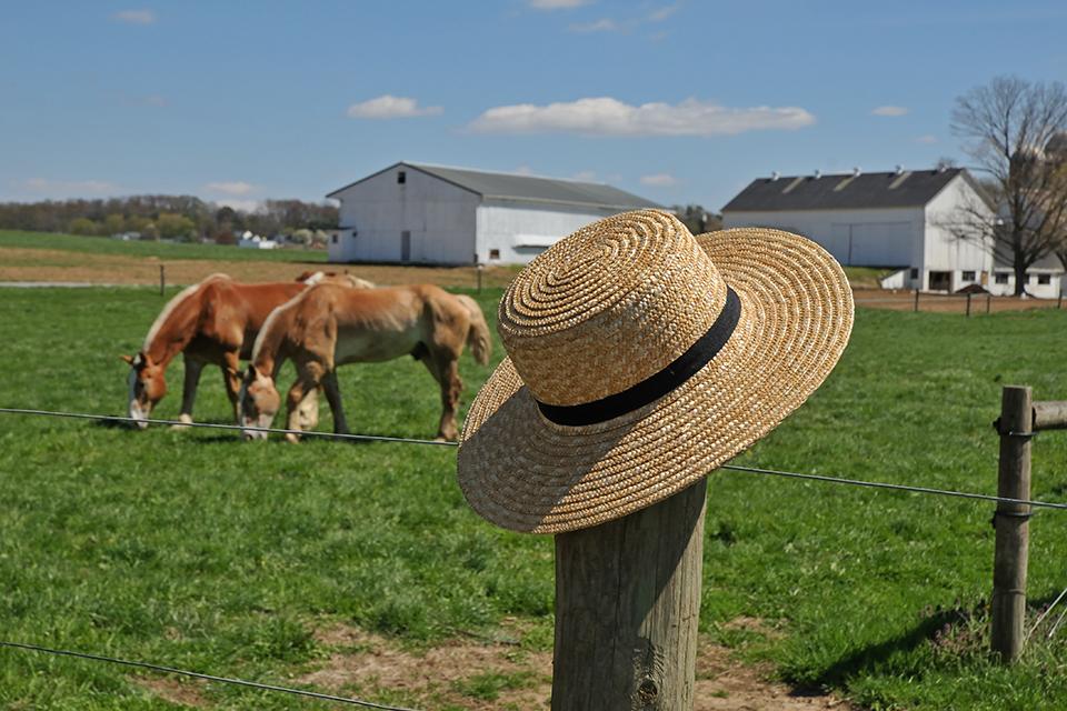 Amish hat on fencepost