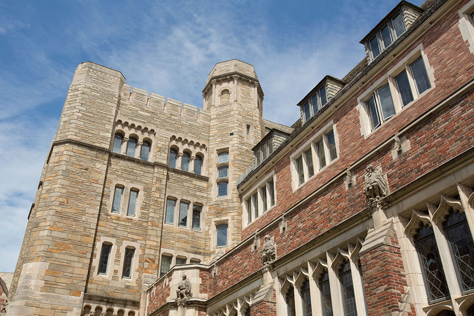 Solomon Center Addresses Accessibility and Aesthetics at Yale and Beyond